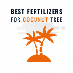 BEST FERTILIZERS FOR COCUNUT TREE